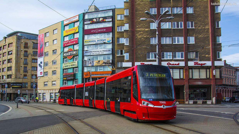 Братислава общественный транспорт