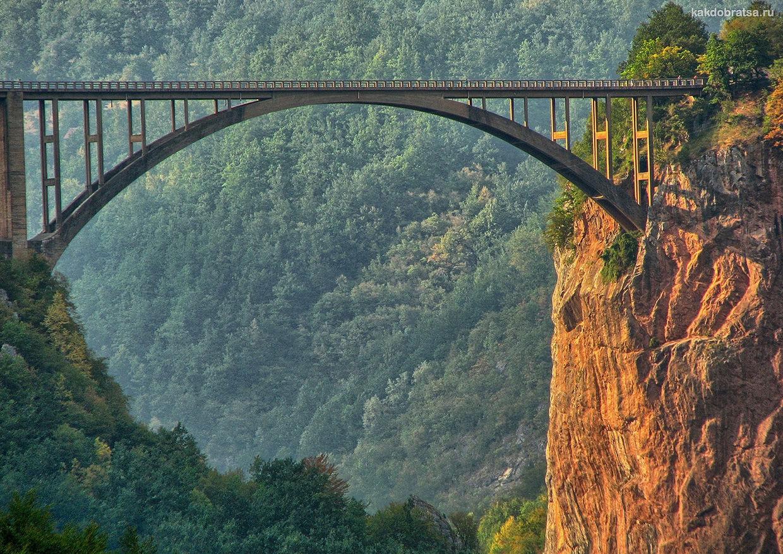 Каньон реки Тары интересное место в Черногории