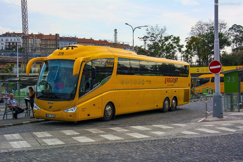 Междугородний автобус из Чехии Regiojet