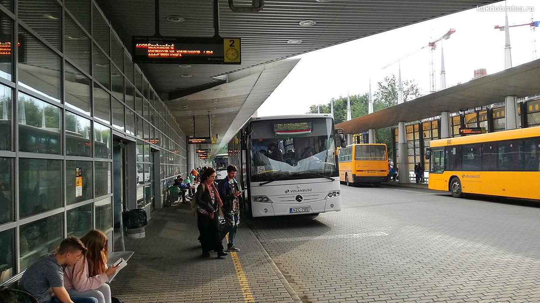 Автовокзал Неплигет в Будапеште