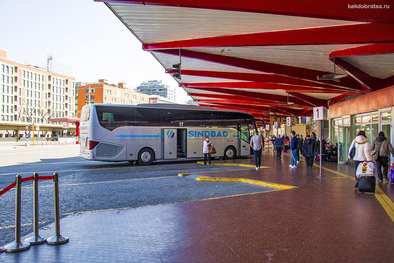 Автобус из Болоньи