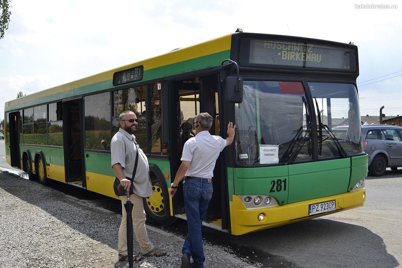 Бесплатный автобус в Освенциме