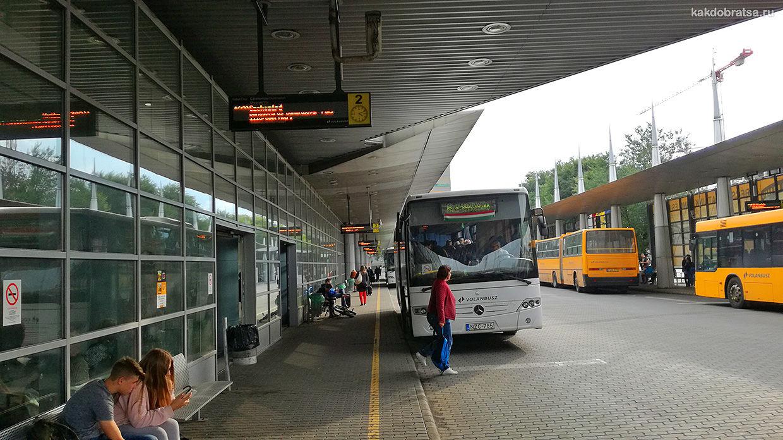 Центральные Автовокзалы Будапешта Неплигет и Келенфельд