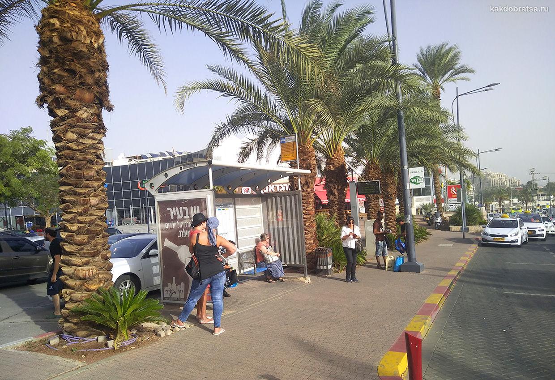 Автобусная остановка в Эйлате
