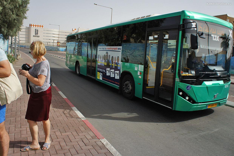 Городской автобус в Эйлате