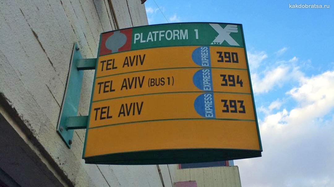 Транспорт в Эйлате (Израиль)