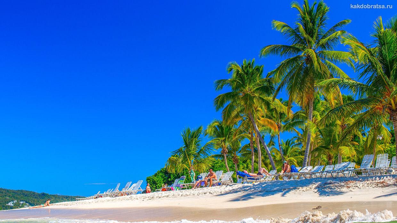 Где отдохнуть этим летом? Лучшие курорты Доминиканы!