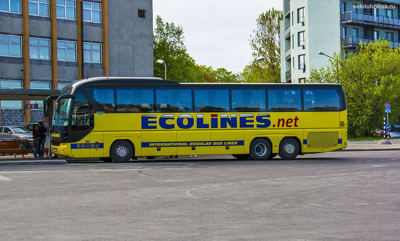 Автобус из Риги в Таллин