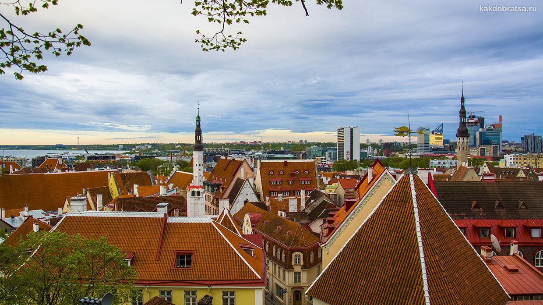 Как добраться из Риги в Таллин