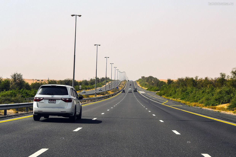 На автомобиле из Дубая в Абу Даби