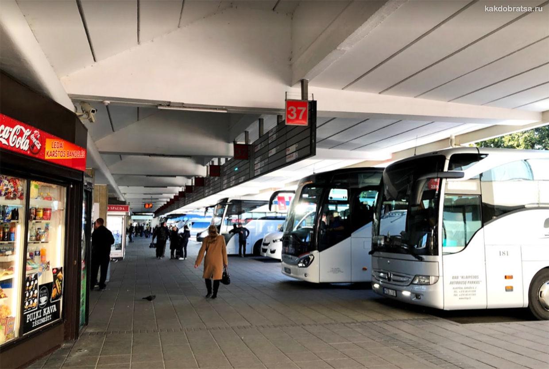 Вильнюс автовокзал
