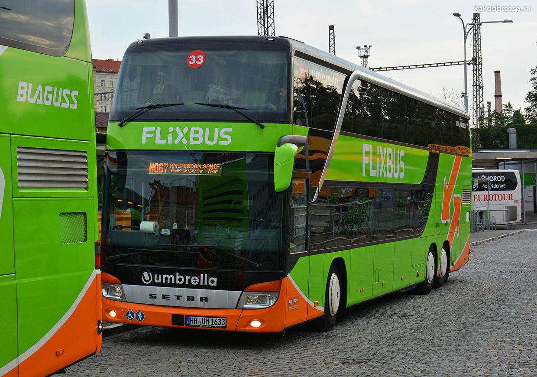 Автобус Кельн Амстердам