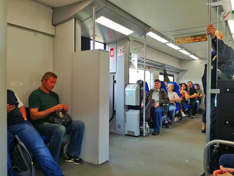 Поезд электричка из Санкт-Петербурга в Петергоф