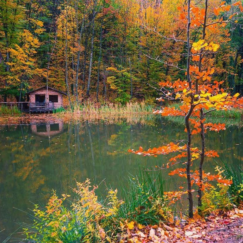 Черепашье озеро скрытое место в Крыму