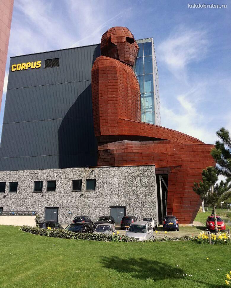 Лейден музей Corpus