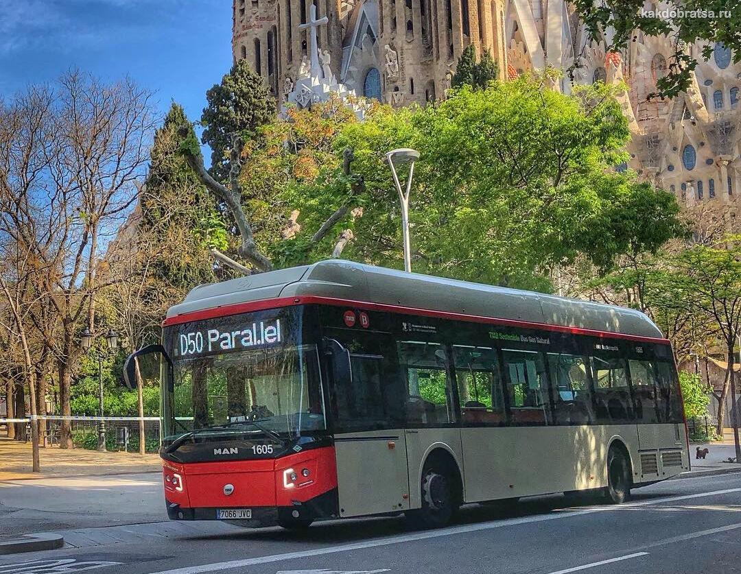 Городской автобус в Барселоне
