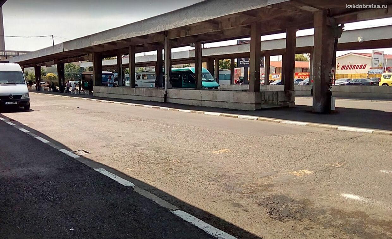 Автовокзал Бургаса Запад автобусы