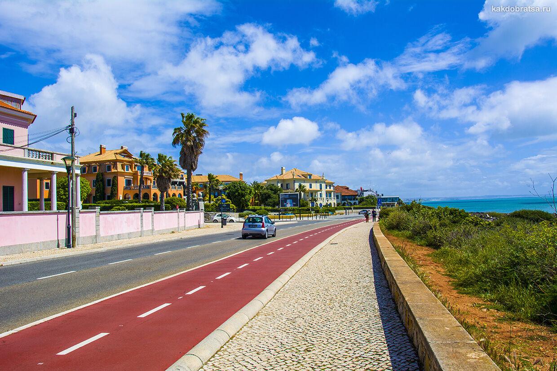 Дороги и правила дорожного движения в Португалии