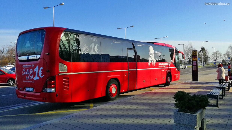Вена Братислава автобус