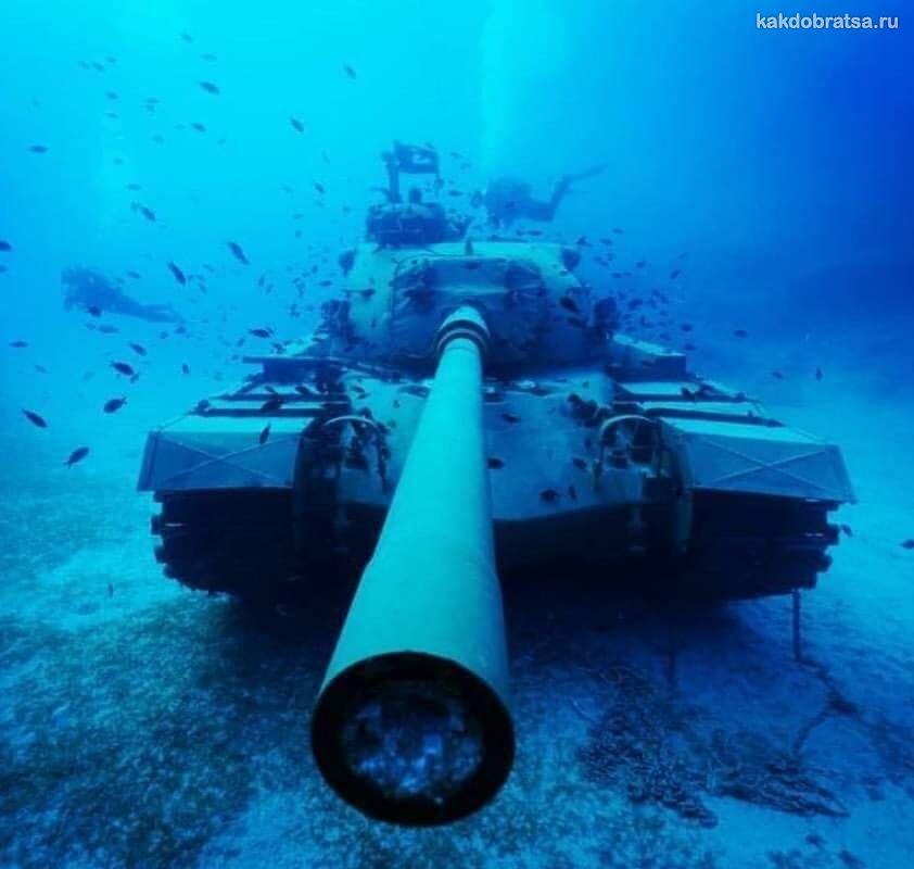 Интересный дайвинг в Турции с танком под водой