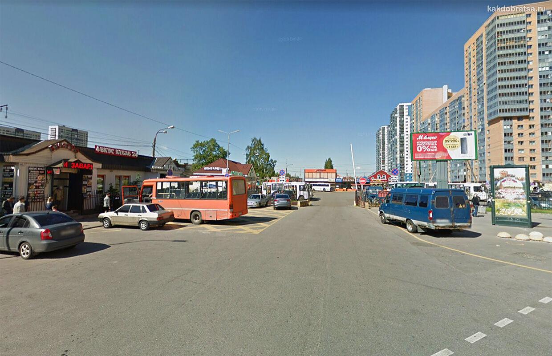 Автобус из Санкт-Петербурга в Выборг
