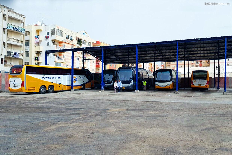 Автобус из Каира в Хургаду добираемся дешево