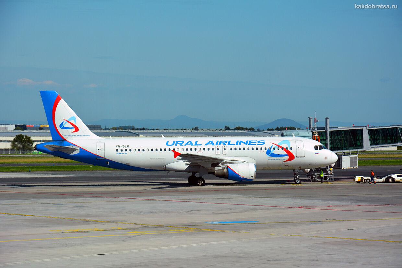 Москва Бишкек перелет и дешевые авиабилеты