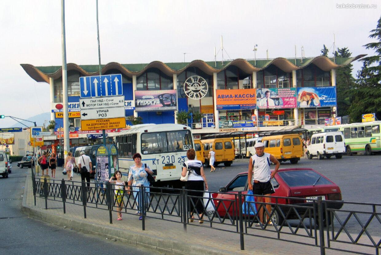 Сочи междугородние автобусы купить билеты
