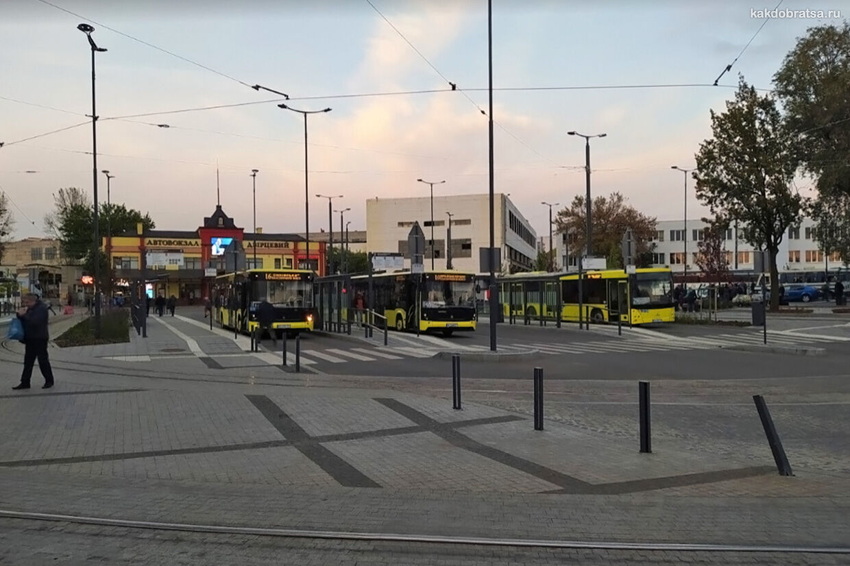Городской транспорт Львов