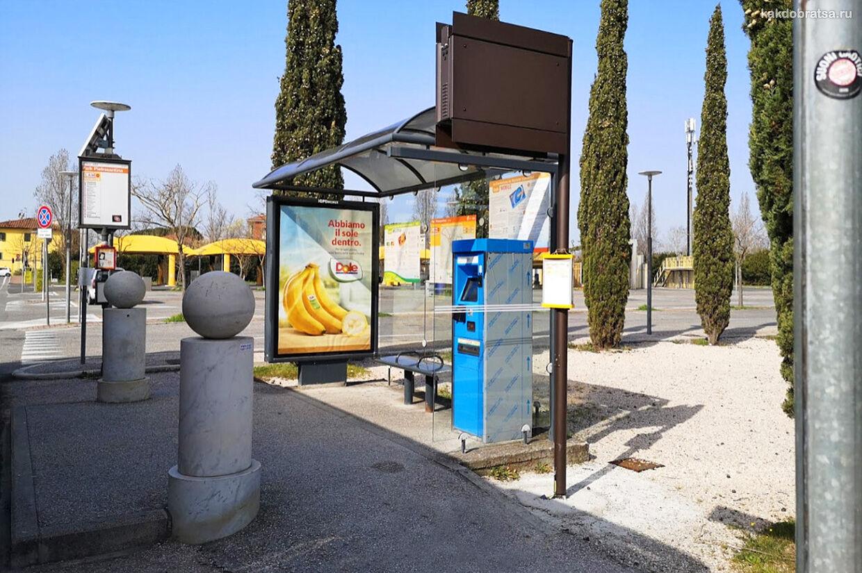 Пиза городской транспорт