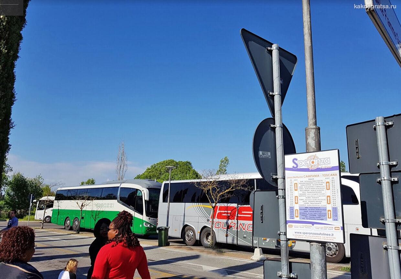 Пиза междугородние автобусы