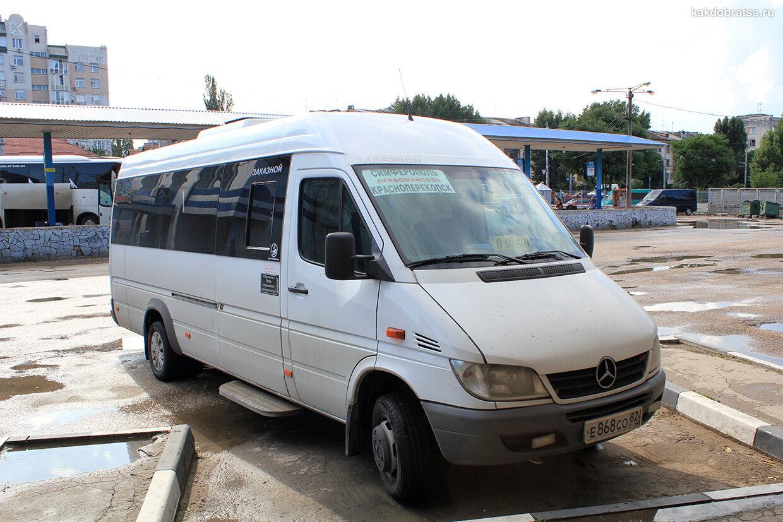 Автобус дешевый способ добраться на Ай-Петри