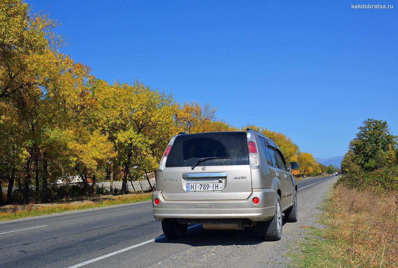 Дорога из Москвы в Тбилиси