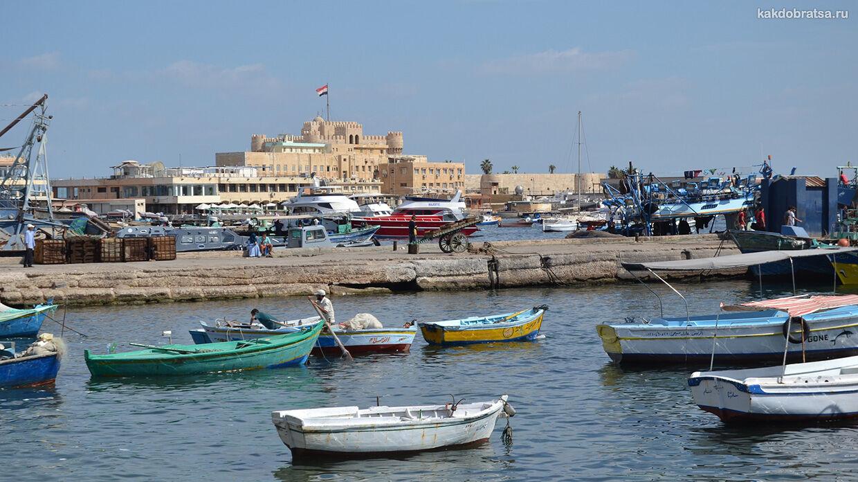 Как добраться из Каира в Александрию
