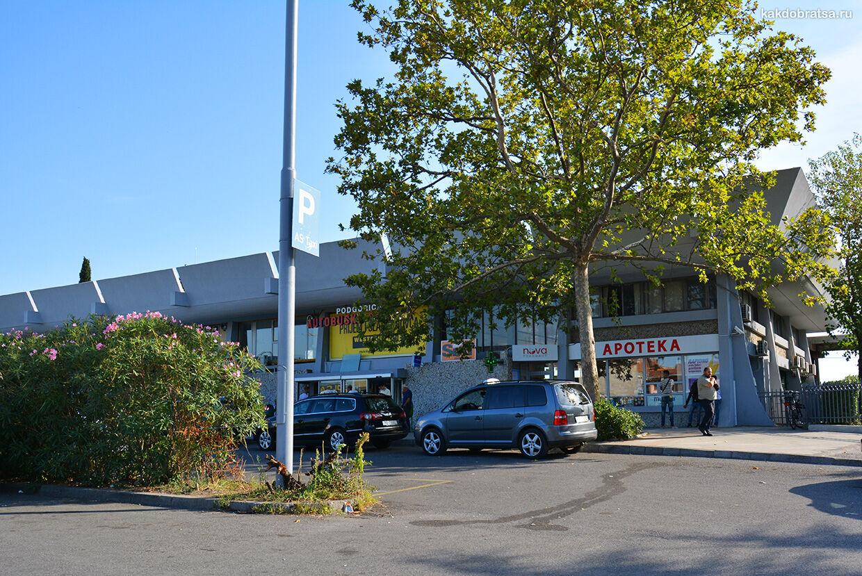 Подгорица главный автовокзал