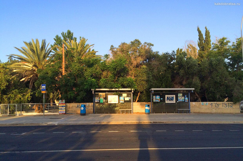 Автобус в Протарасе, Кипр