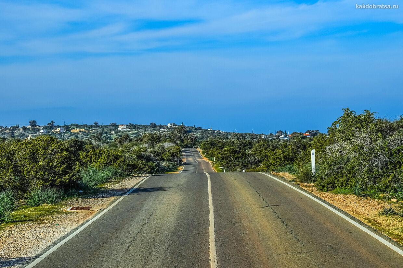 Дорога до Протараса