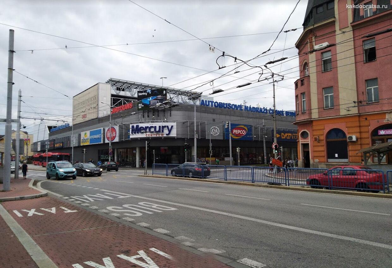 Автовокзал Ческе Будеёвице услуги, где поесть, как добраться