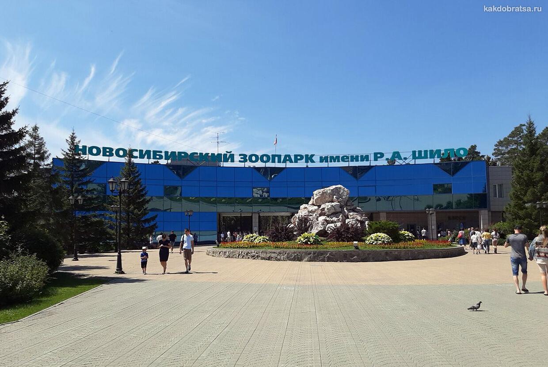 Новосибирский зоопарк стоимость входных билетов онлайн и время работы