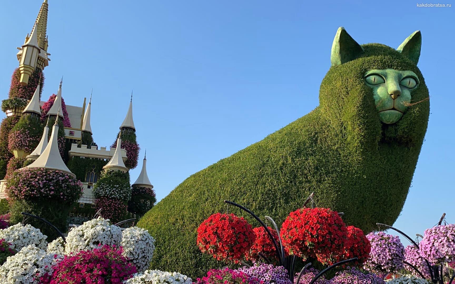 Экскурсия по Парку цветов в Дубае
