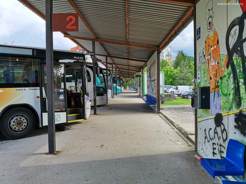 Пазин автобус и как добраться