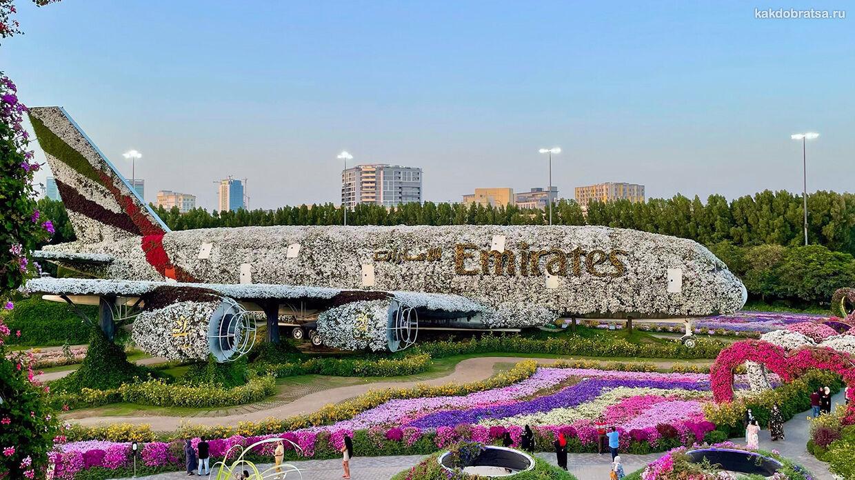 Парк цветов в Дубае или Сад чудес