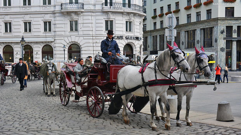 Как добраться из Загреба в Вену
